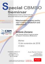 Special Seminar Antonio Zorzano